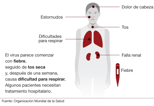Coronavirus Adrogué Coronavirus Burzaco Coronavirus Rafael Calzada San Vicente